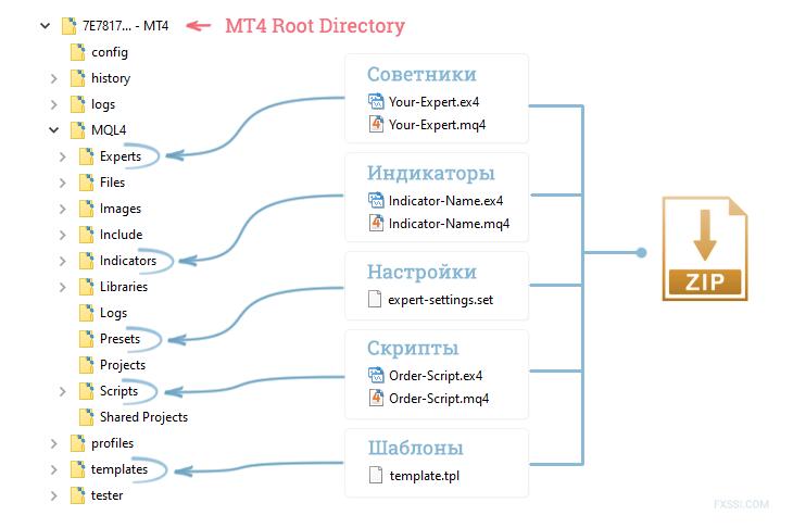 Общая установка файлов mt4